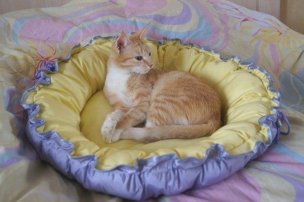 Пошив лежанки для кошки