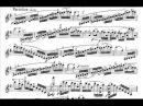 Vieuxtemps, Henry Fantasia Appassionata (begin) opus 35