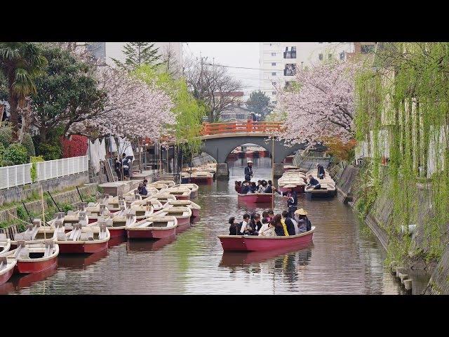 [ 4K Ultra HD ] 春の柳川・川下り Yanagawa River Cruising in Spring (Shot on RED EPIC)