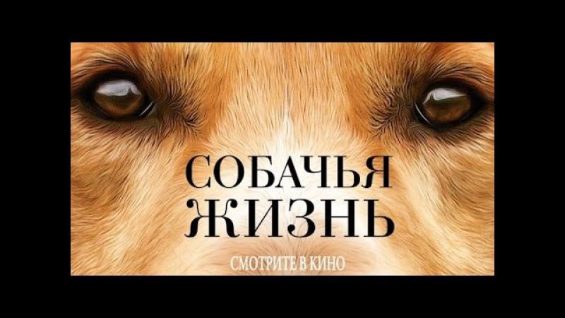 Собачья жизнь 2017 Трейлер к фильму Русский язык