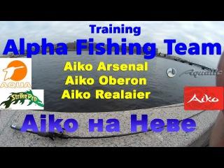 Vlog /// AFT Training /// Aiko приехали...