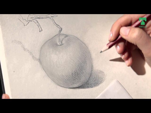 Twock 11 Уроки рисования Карандаш штриховка Яблоко 12