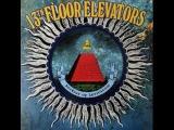 13th Floor Elevators (Roky Erickson) - Rockius of Levitatum Live 1966-67 (FullVinyl 2011)