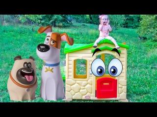 Тайная Жизнь Домашних Животных - Домик для Макса. Мультфильмы для детей Новые Игрушки из мультика