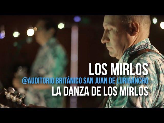@ Los Mirlos La Danza de Los Mirlos