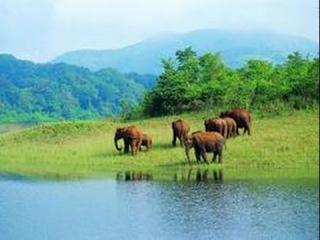 Природа Индии. Большое путешествие. Священная река. Ганг. Документальный фильм Na...