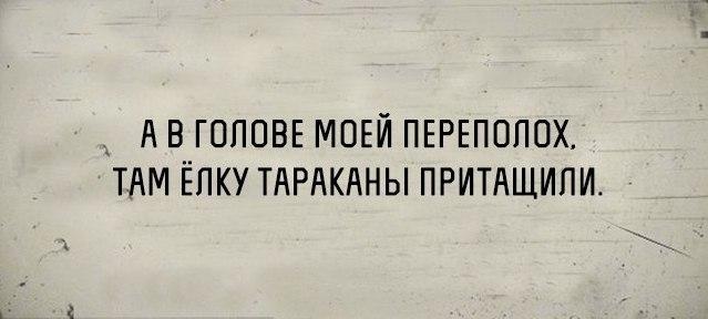 https://pp.vk.me/c626420/v626420423/4038d/K41Vxa9mZpY.jpg