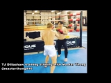 MMA Updates; Conor McGregor In Shape At UFC 202 Workout; TJ Dillashaw Striking; Conor McGregor w- Nate Diaz Edit