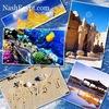 Экскурсии в Египте с NashEgypt!!!!