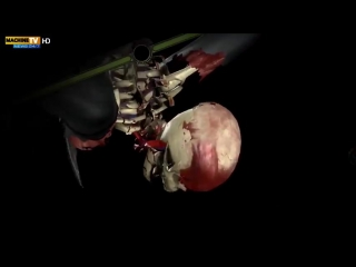 Mortal Kombat в реальной жизни. (Vine Video)