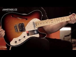Fender American Elite Telecaster Thinline 2016 (Honza Šobr)