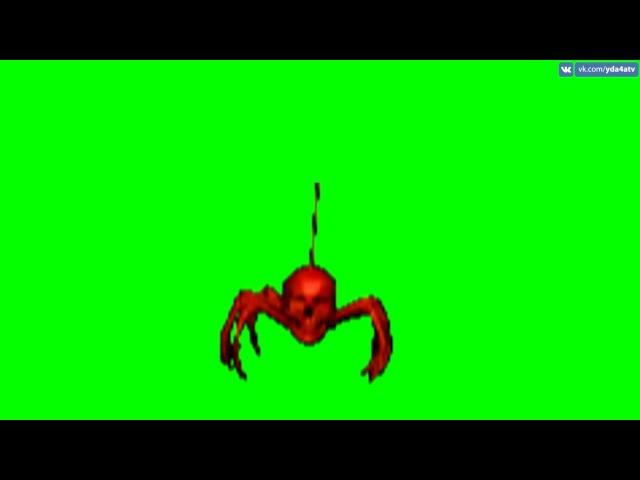 ФУТАЖ ПАУК НА ЗЕЛЁНОМ ФОНЕ ЭКРАНА - FREE GREEN SCREEN BACKGROUNDS VIDEO FROM yda4aTV