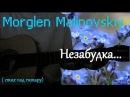 Morglen Malinovskiy Незабудка стих под гитару