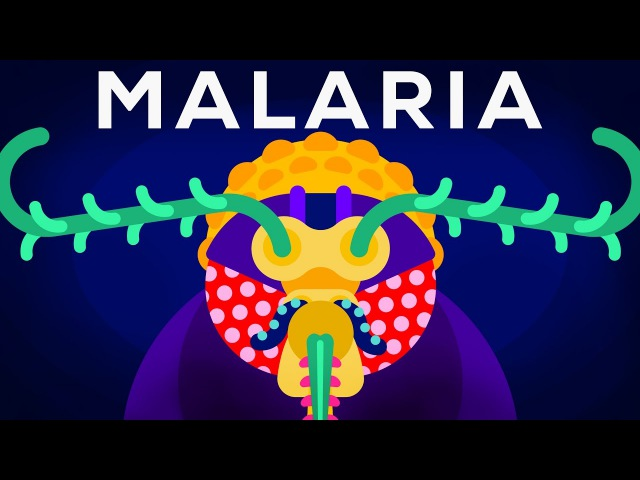 Genetic Engineering and Diseases – Gene Drive Malaria