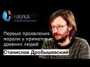 Станислав Дробышевский - Первые проявления морали у приматов и древних людей