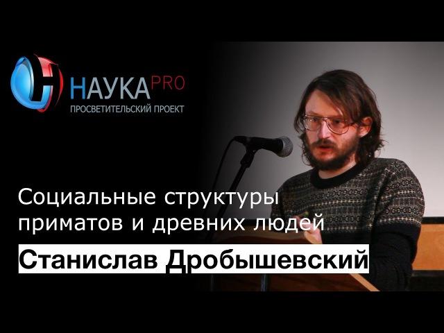 Станислав Дробышевский - Социальные структуры приматов и древних людей