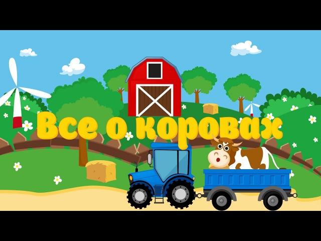 Мультик про Корову для Детей Развивающий Мультфильм о Домашних Животных для Малышей Видео для детей