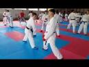 My karate skill (Luigi Busa seminar 2016) (2)