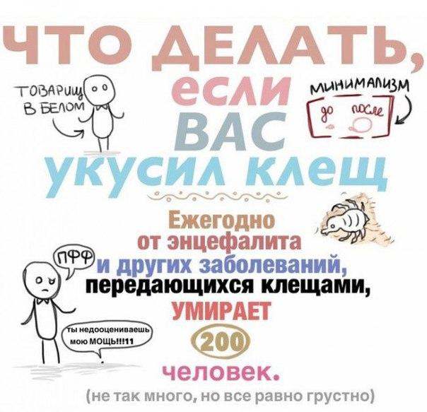 Илеит Региональный