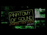 Anatomy Of Sound A-Mase - New Vision (Breaks)