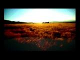 Kim Carnes - Bette Davis Eyes (Golden sunshine remix)