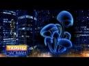 Тайны Чапман. Все мы - грибы (30.11.2016) HD