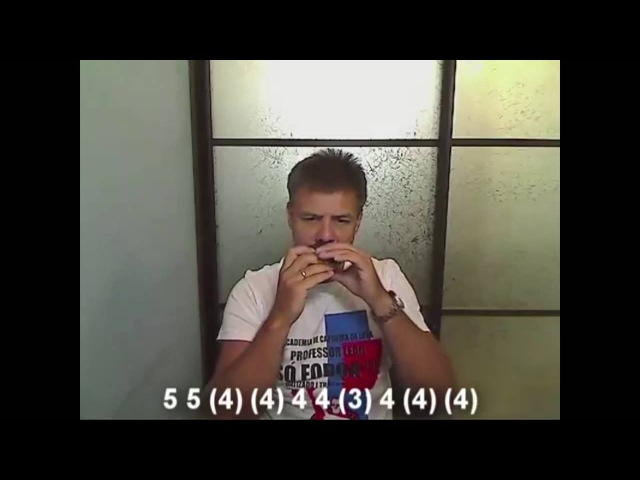 Учимся играть на губной гармошке ( Andre Tay - Я церковные люблю колокола)