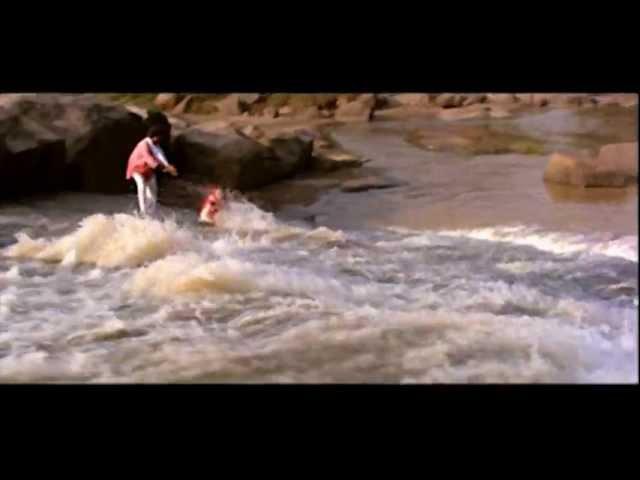Kya Mousam Aya Hai Video Song | Anari Video Songs | Venkatesh | Karishma Kapoor | Muralimohana Rao