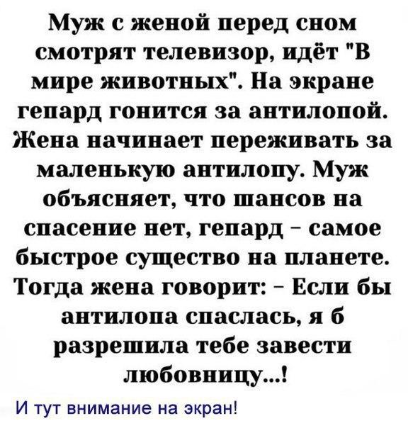 Фото №456245141 со страницы Юли Хасиневич