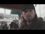 Bucky Barnes Human