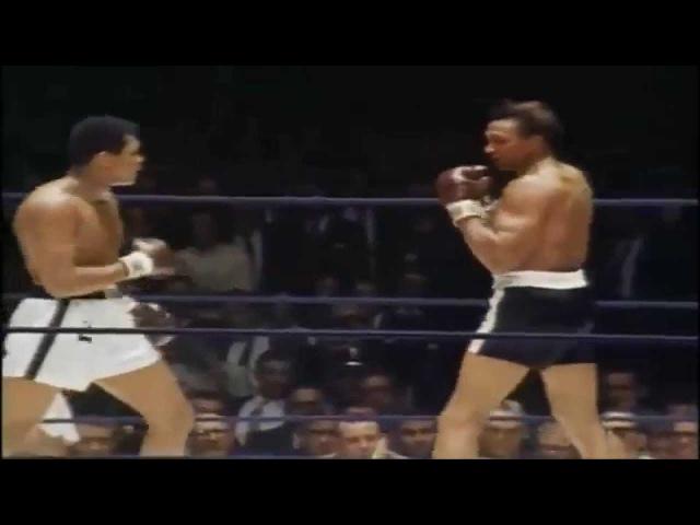 Muhammad Ali Ali Bomaye