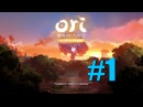 Ori and the Blind ForestDefinitive Edition__Часть 1__прохождение