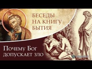 Почему Бог допускает зло? Андрей Солодков