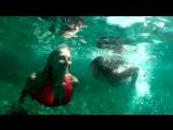 Подводный Симеиз 2016