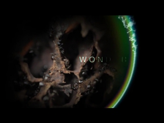 BBC Чудеса жизни 2 Расширяющаяся вселенная HD