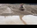 Молодого Оленя спас из грязи Экскаваторщик
