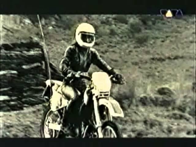 Ravers nature - bring me noise ( viva tv )