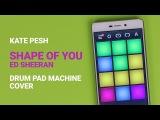 Kate Pesh -  Shape of You (Drum Pad Machine Remix)