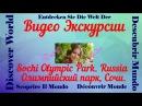 Олимпийский парк в Сочи, обзорная экскурсия по всем объектам.