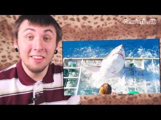 100500 - Белая Акула напала на людей | Great White Shark Cage Breach Accident