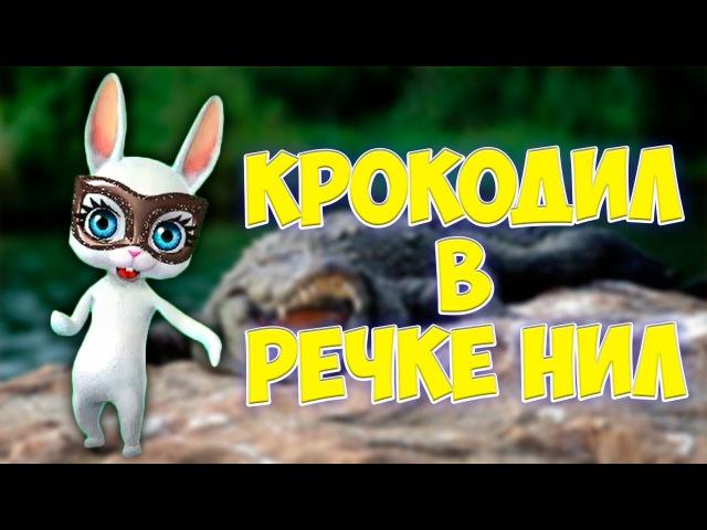 Крокодил в речке Нил! Прикольная смешная заводная песенка переделка попурри ZOOBE Муз Зайка