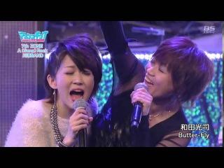 Wada Kouji - Butter-Fly (2013) - Digimon - LIVE