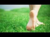 Мастер-класс Работа с ногами (часть 1 из 3), Александр Иванов