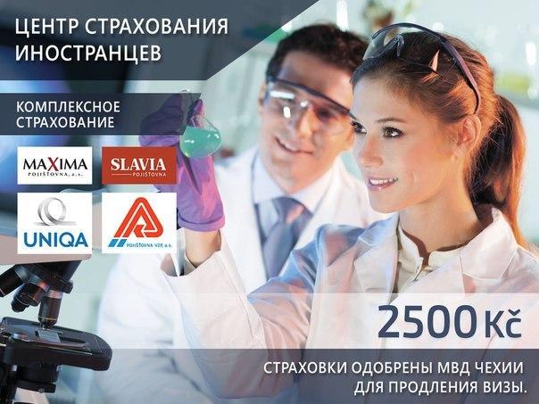 Оформление страховки от страховой компании Maxima