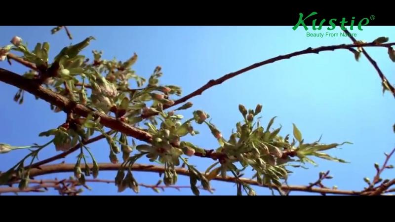 Kustie Brand Video 2016
