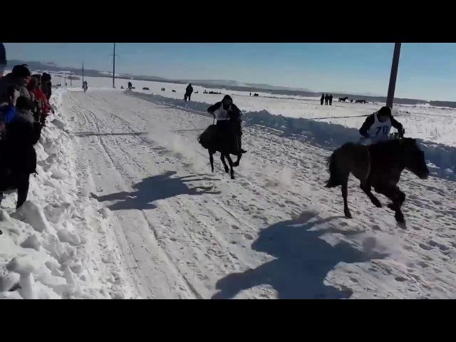 Сумасшедшие зимние скачки. Башкиры
