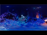 The Forbidden Forest  360 Video  J.K. Rowling's Wizarding World