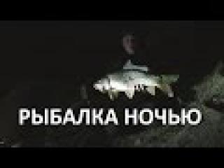 Ночная рыбалка. Видео отчёт о ночной рыбалке на сома и карпа.