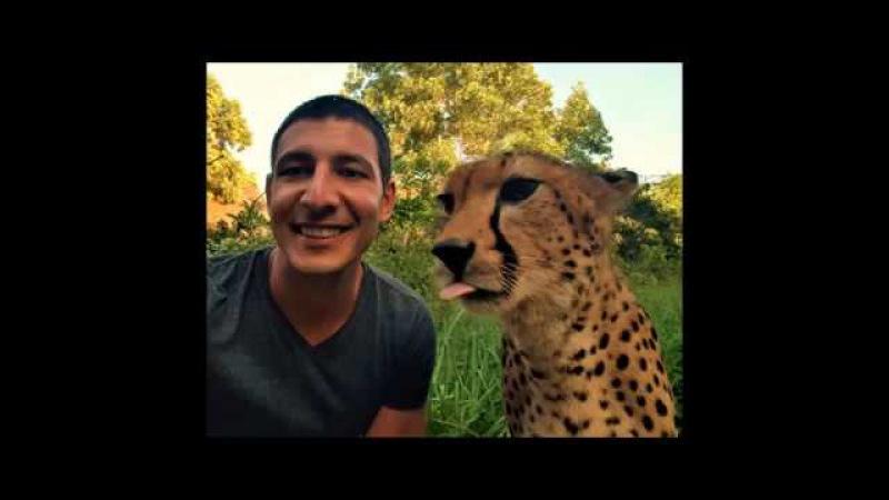 Southern Africa Tour by Efe TANAY (Güney Afrika Ülkeleri Turu)