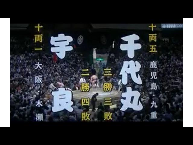 2016 相撲(SUMO) 9月場所(Sept.Stage) 七日目(7day) 宇良(Ura) VS 千代丸(Chiyomaru)